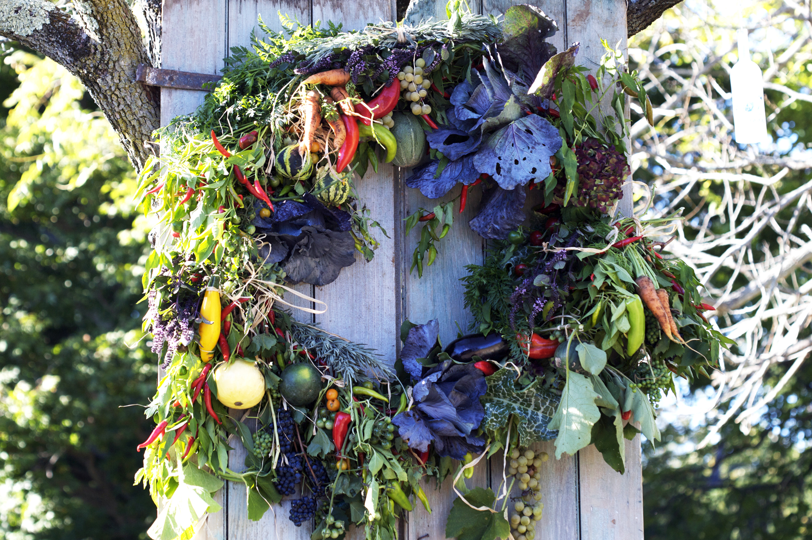 Wakeman_Farm_Harvest_Wreath