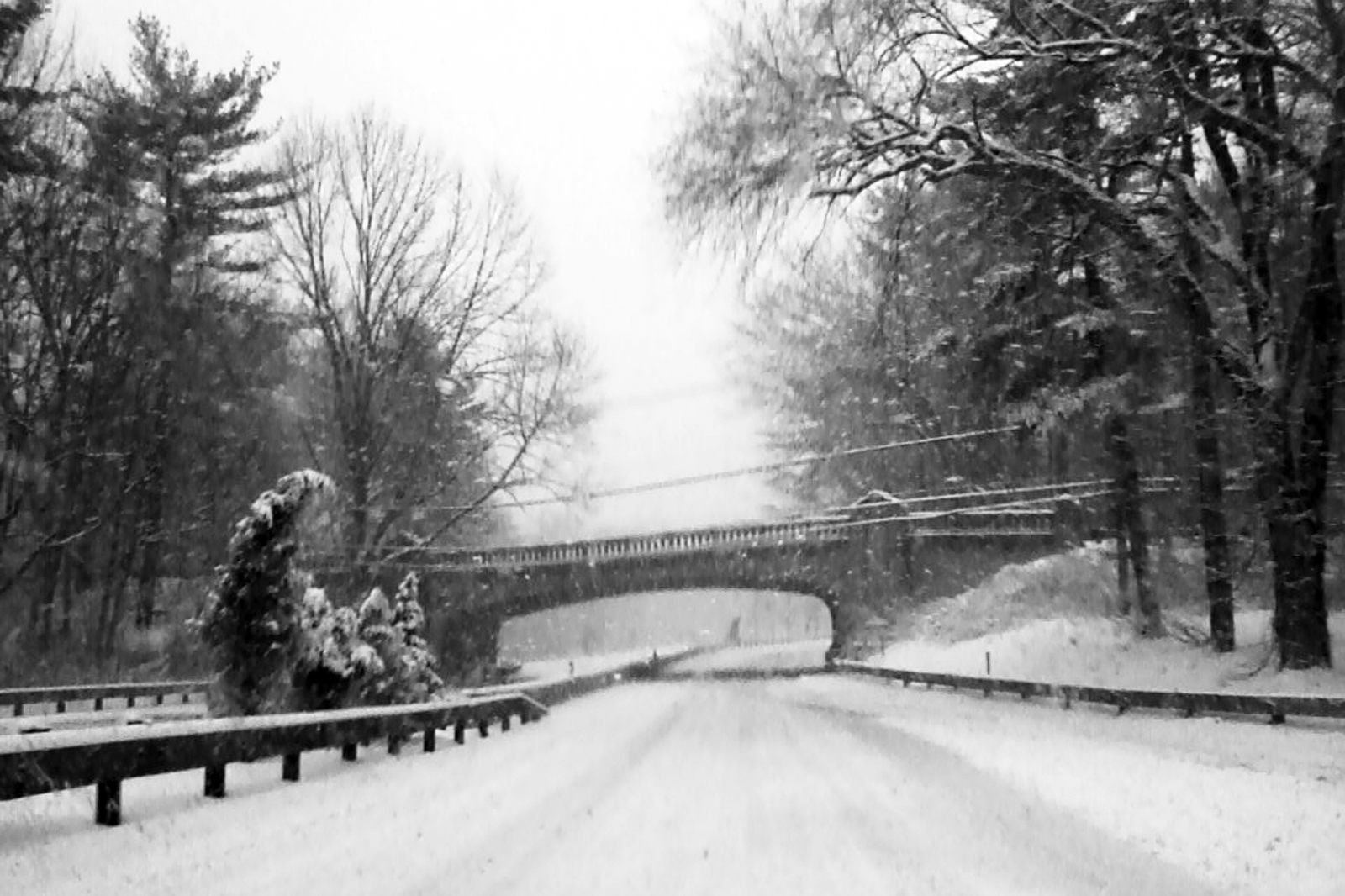Merritt Parkway on the way to the NYC Flower Market